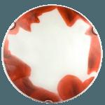 Осветително тяло за стена плафон серия - Rose Ф300