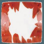 Осветително тяло за стена плафон серия - Rose 40/40