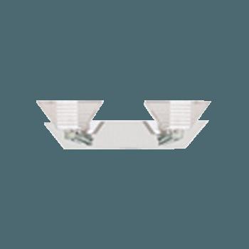 Осветително тяло спот - Ariana 58101-2